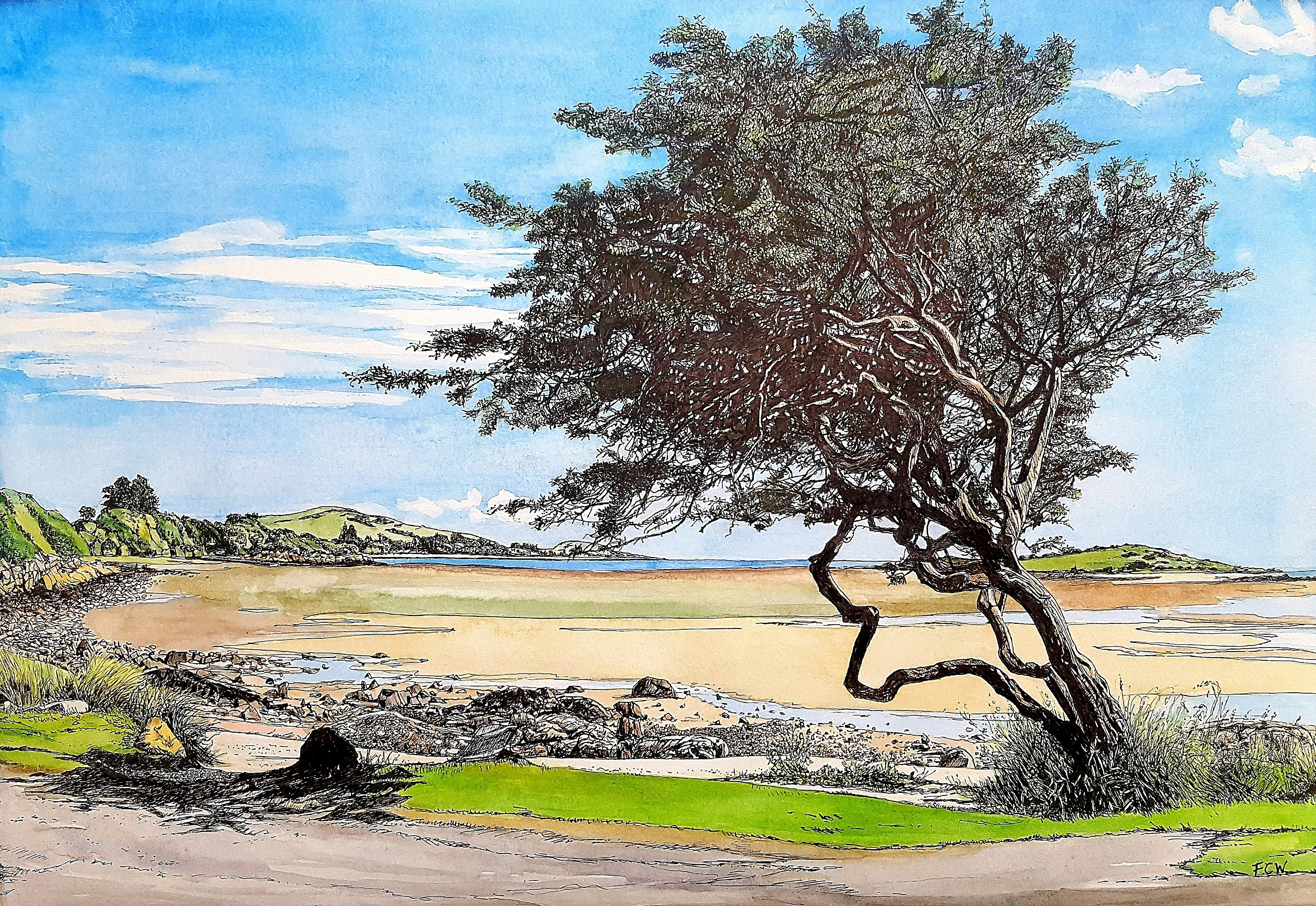 Windswept Tree, Kippford_by Fiona Webster.jpg